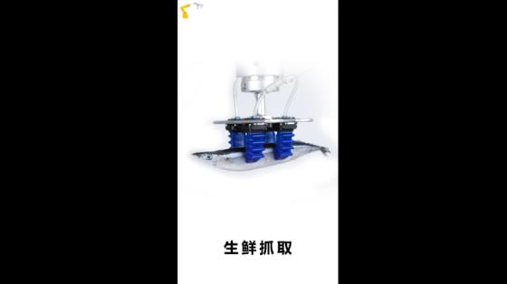 食品行业_秋刀鱼抓取_SRT软体机器人