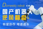 国产机器人
