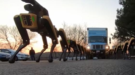 波士顿动力系列:10只SpotMini拖动一辆卡车