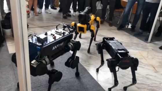四足機器人哪家強:ANYmal、Laikago和波士頓動力Spot Mini碰面!