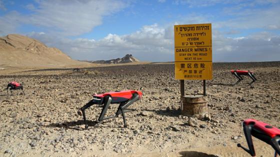 行走速度最快创世界纪录:阿尔法机器狗C系列现场测试